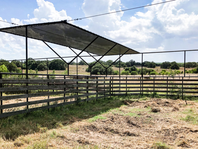 Studies by agricultural departments of colleges across the country conclude that  livestock does best when they have adequate air flow, shade, and water.