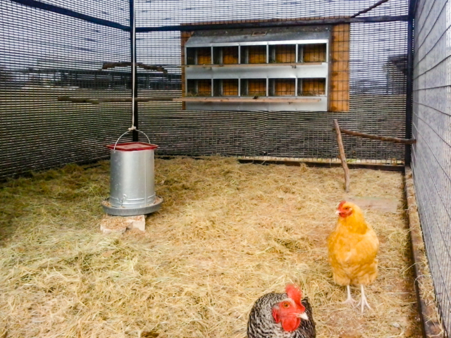 Chicken shade weather screens for year round protection from wind, rain, sun and snow for healthier livestock.  Chicken coops keep an open air atmosphere while keeping animals contained.