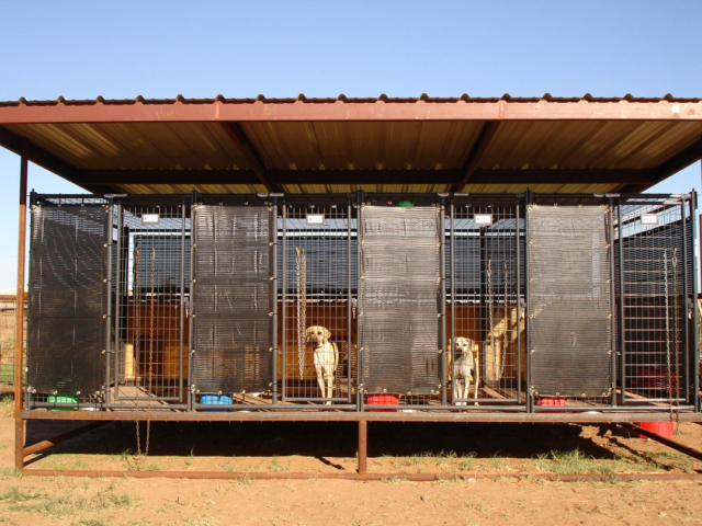 By reducing the blowing dust, wind screens keep the animals cool and dry. The UV resistant shade screens or tarps that are durable enough to withstand heat, rain and snow. Vision barrier screens add privacy to a kennel,