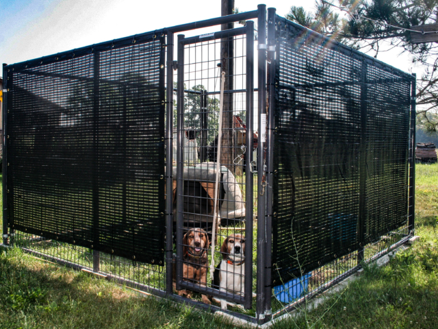 Small yard, good use of space.  Protection and vision barrier, the ability to move this yard sized pen to a fresh area is one of it's many benefits provided by shade-screens.