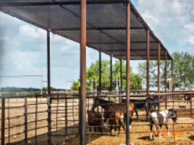 Providing a shady refuge from the sun will encourage horses to loaf at the property line where it is easier to check on them and gather when needed.